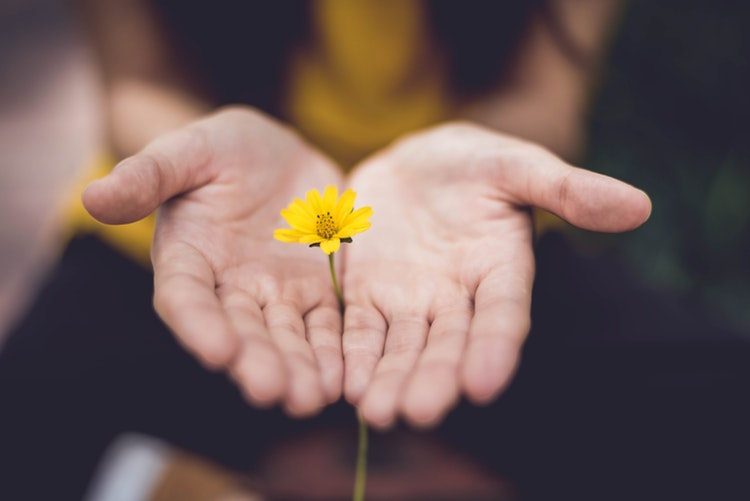 В прощеное воскресениео Вере, Прощении, Смирении и Трансформации